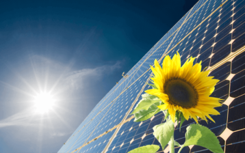 Photovoltaik-Anlage mit Sonnenblume und Sonne